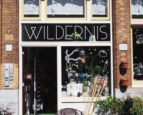 Hotspot: De Wildernis
